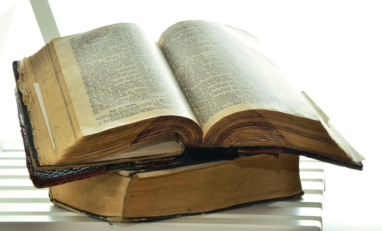 ブログ記事用聖書
