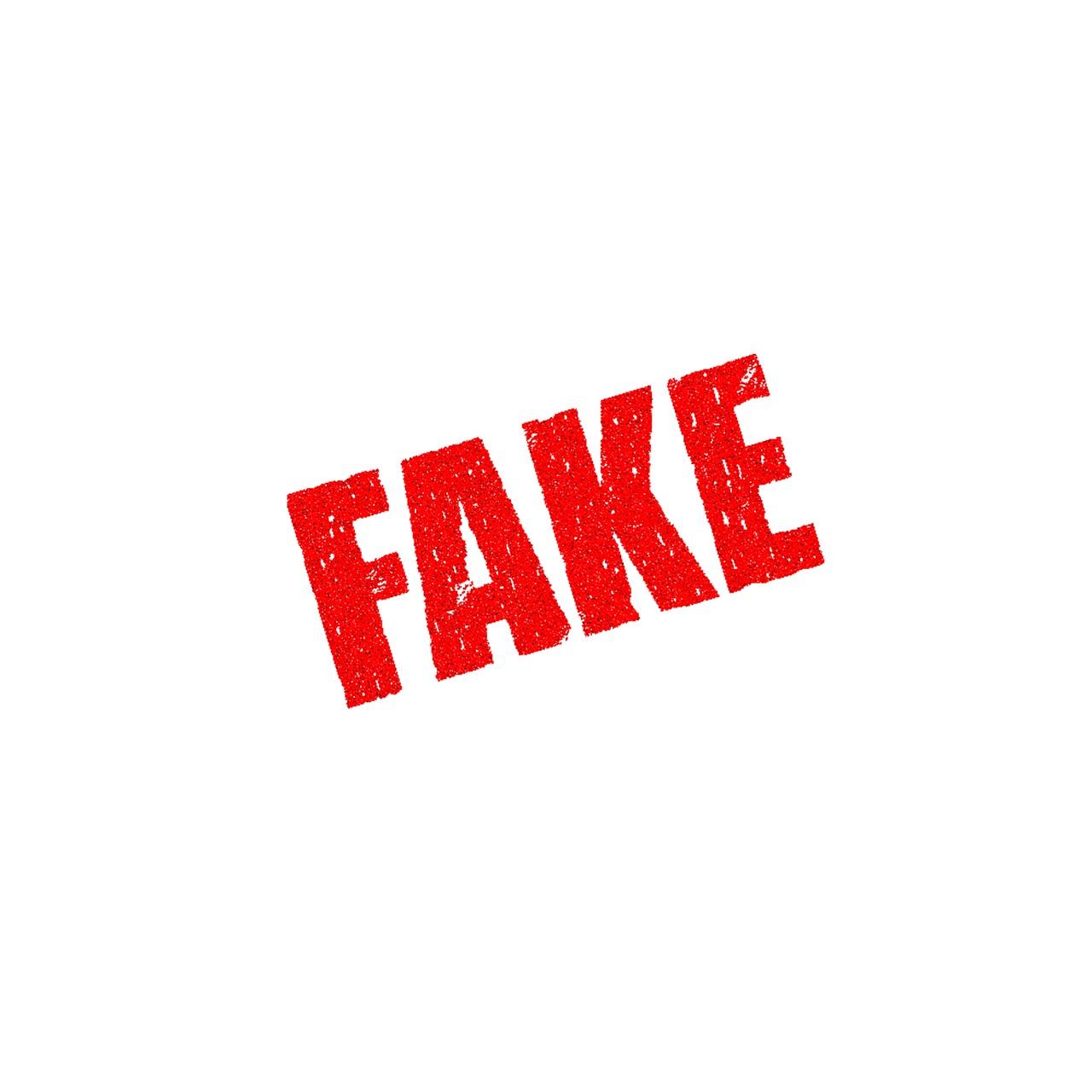 blog-fake
